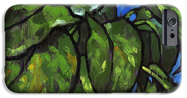 Plants iPhone Cases - Pothos 1 iPhone Case by Douglas Simonson