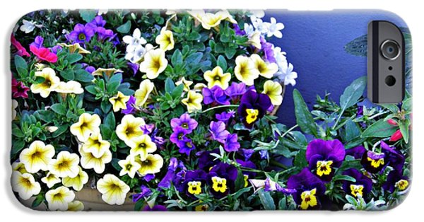 Business Photographs iPhone Cases - Potted Spring Flowers iPhone Case by Sarah Loft