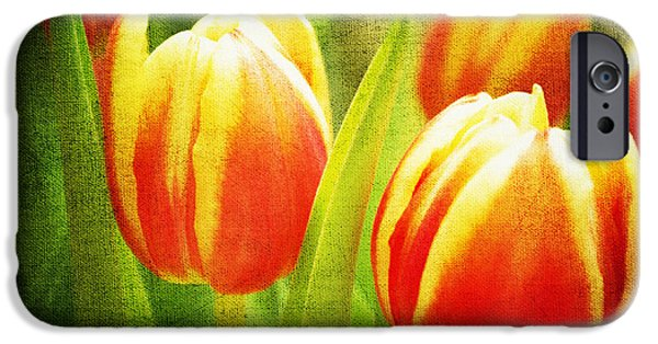 Flora Mixed Media iPhone Cases - Power of spring iPhone Case by Angela Doelling AD DESIGN Photo and PhotoArt