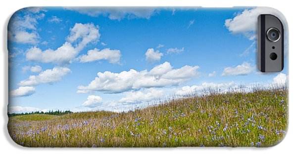 Mounds iPhone Cases - Prairie in Bloom Under Blue Sky iPhone Case by Jeff Goulden