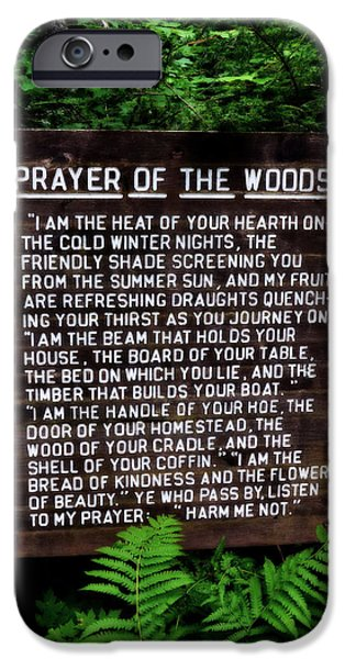 Michelle iPhone Cases - Prayer of the Woods iPhone Case by Michelle Calkins