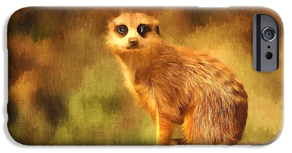 Meerkat Digital Art iPhone Cases - Precious Meerkat  iPhone Case by Tara Lee Richardson