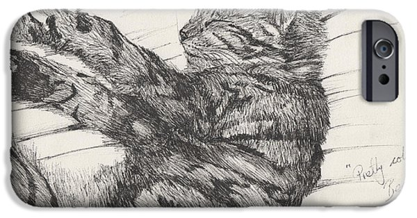 Cat Prints Drawings iPhone Cases - Pretty collie beastie iPhone Case by Vincent Alexander Booth