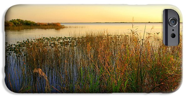 Sunset At The Lake iPhone Cases - Pretty evening at the lake iPhone Case by Susanne Van Hulst