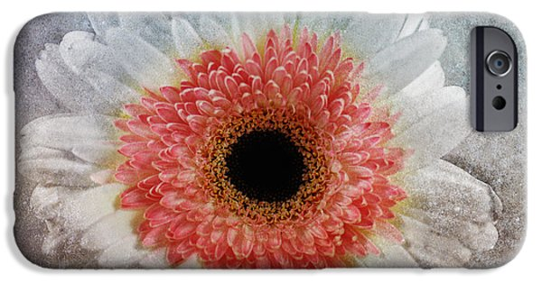 Macro Mixed Media iPhone Cases - Pretty Gerbera Macro iPhone Case by Georgiana Romanovna