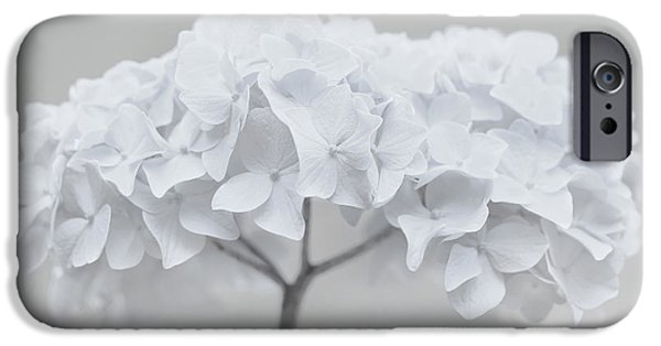 Monotone iPhone Cases - Pretty in White Hydrangea Flowers iPhone Case by Jennie Marie Schell