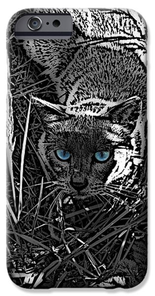 Bad Ass iPhone Cases - Bodhi Preys iPhone Case by Wendy Rickwalt