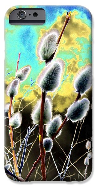 Proclamation iPhone Cases - Proclamation Of Spring iPhone Case by Will Borden