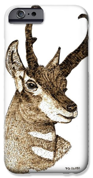 Water Colors Pyrography iPhone Cases - Pronghorn Antelope iPhone Case by Pat Sloss