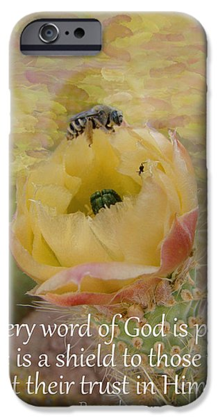 Buy iPhone Cases - Proverbs 30 5 iPhone Case by Beverly Guilliams