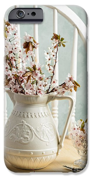 Interior Still Life iPhone Cases - Prunus Spring Blossom iPhone Case by Amanda And Christopher Elwell