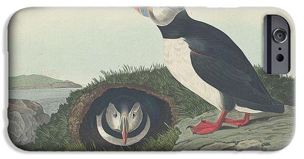 Shorebird iPhone Cases - Puffin iPhone Case by John James Audubon