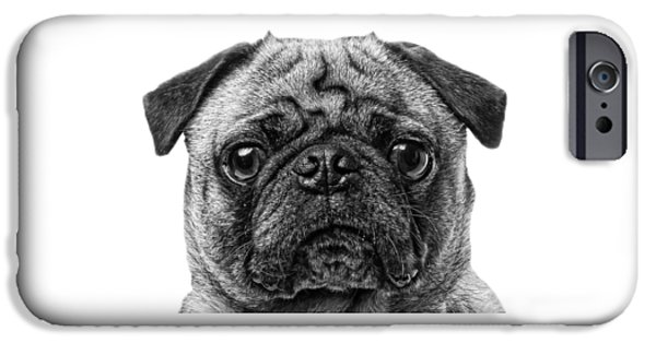 Cute Puppy Photographs iPhone Cases - Pug T-shirt iPhone Case by Edward Fielding