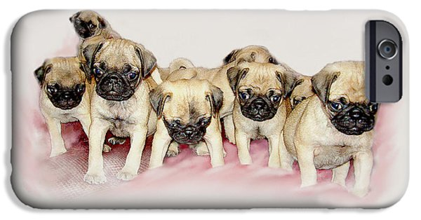 Puppies Digital iPhone Cases - Pugs R Us iPhone Case by Bonnie Willis