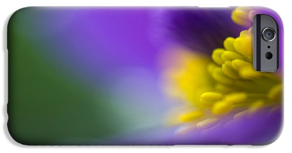 Floral Photographs iPhone Cases - Pulsatilla iPhone Case by Silke Magino