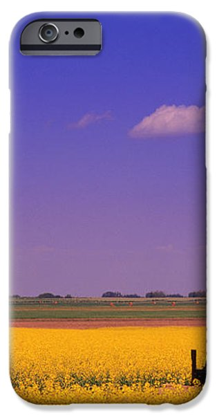 Pumpjack In A Canola Field iPhone Case by Carson Ganci