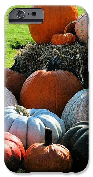 Farm Stand iPhone Cases - Pumpkin stand iPhone Case by Hope Malott