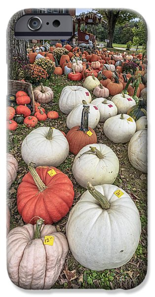 Farm Stand iPhone Cases - Pumpkins for sale iPhone Case by Edward Fielding