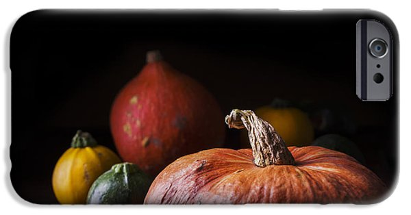 Crops iPhone Cases - Pumpkins iPhone Case by Jelena Jovanovic