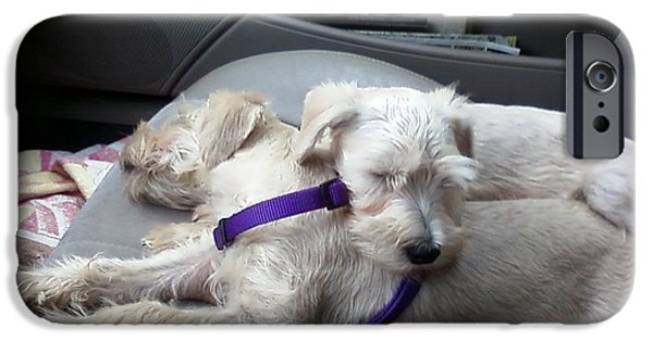 Puppies iPhone Cases - Puppies Sleeping iPhone Case by Robin McCown