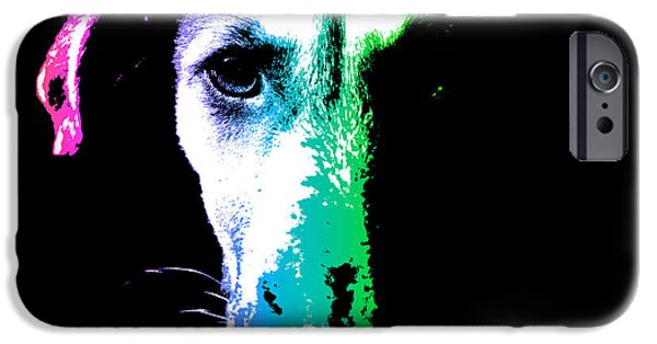 Dogs iPhone Cases - Puppy dog head portrait colors art iPhone Case by Gregory DUBUS