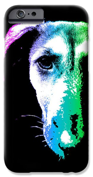 Puppies Digital Art iPhone Cases - Puppy dog head portrait colors art iPhone Case by Gregory DUBUS