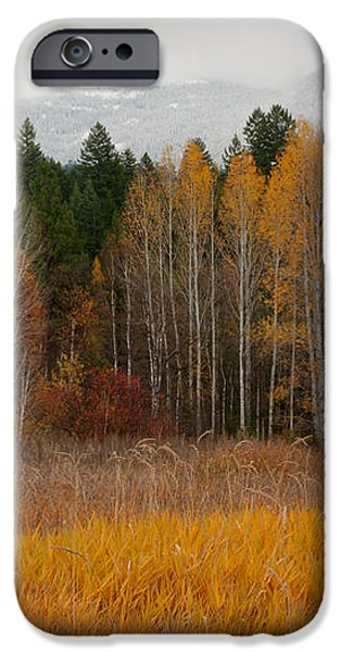 Purcell Gold iPhone Case by Idaho Scenic Images Linda Lantzy