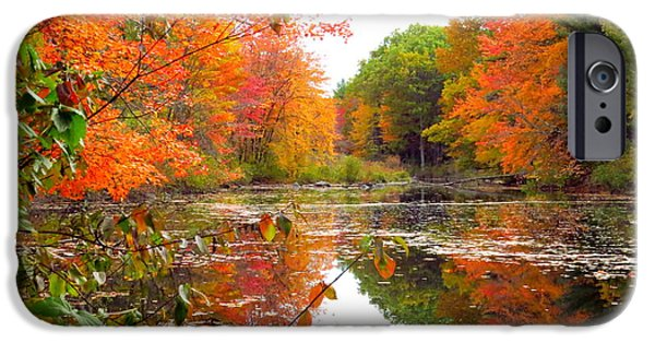 Autumn iPhone Cases - Purgatory Reflection iPhone Case by Laurie Breton