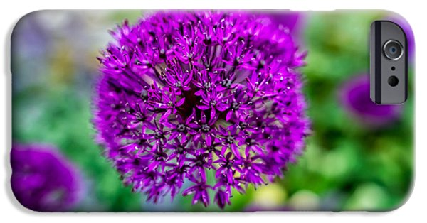 Blossom iPhone Cases - Purple iPhone Case by Adrian Evans