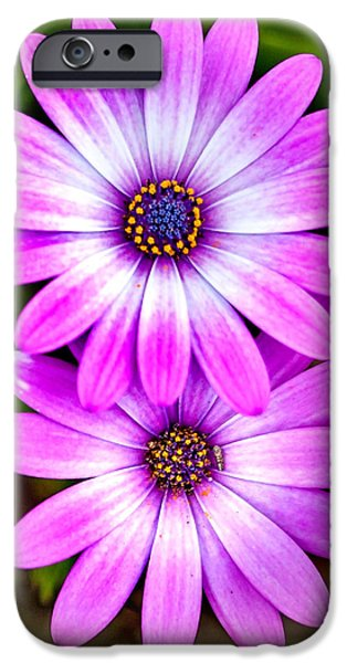 Centre iPhone Cases - Purple Flowers iPhone Case by Az Jackson