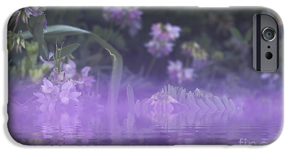 Flower Bombs iPhone Cases - Purple Mist iPhone Case by James Wollard