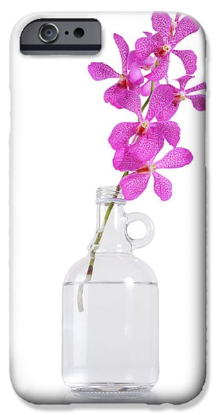 Floral Photographs iPhone Cases - Purple Orchid Bunch iPhone Case by Atiketta Sangasaeng