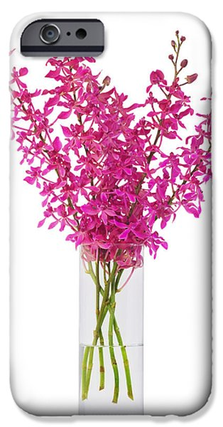 Floral Photographs iPhone Cases - Purple Orchid In Vase iPhone Case by Atiketta Sangasaeng