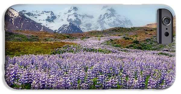 Meadow Photographs iPhone Cases - Purple Pathway iPhone Case by William Beuther