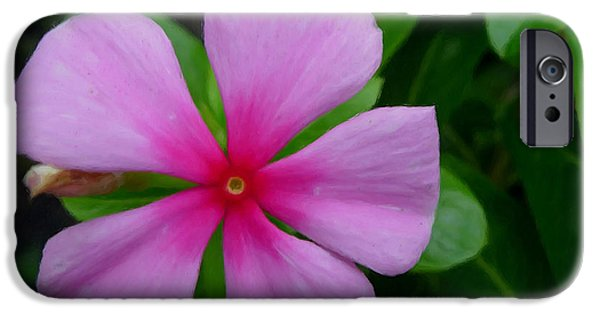Watercress iPhone Cases - Purple Periwinkle flower 1 iPhone Case by Lanjee Chee