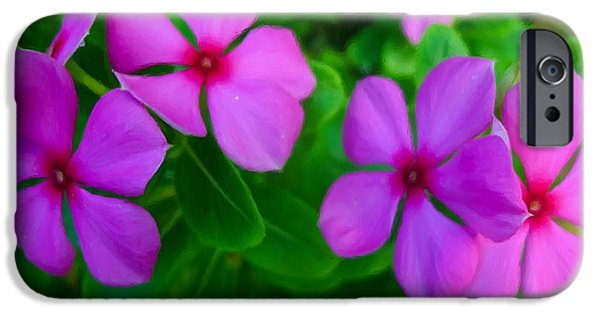 Watercress iPhone Cases - Purple Periwinkle flower 2 iPhone Case by Lanjee Chee