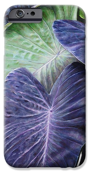 Art Medium iPhone Cases - Purple Taro iPhone Case by Sandra Blazel - Printscapes