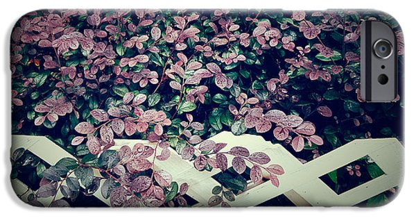 Overhang iPhone Cases - Purplish red garden iPhone Case by Kathleen Wong