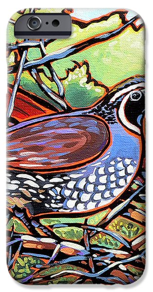 Quail iPhone Case by Nadi Spencer