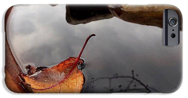 Rain Barrel iPhone Cases - Quiet Corners  iPhone Case by Viviana  Nadowski