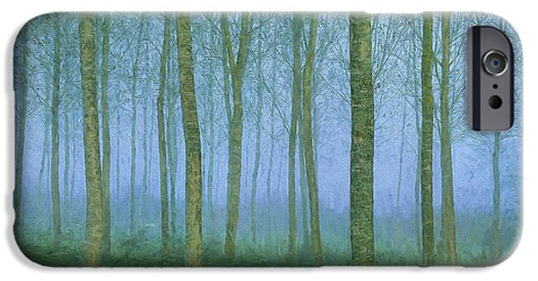 Fog Mist iPhone Cases - Quiet Forest iPhone Case by Steve Bailey