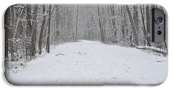 Snow iPhone Cases - Quiet Solace iPhone Case by Jason Davies
