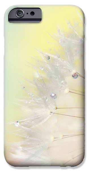 Rainbow Colors iPhone Cases - Rainbow Connection II iPhone Case by Amy Tyler