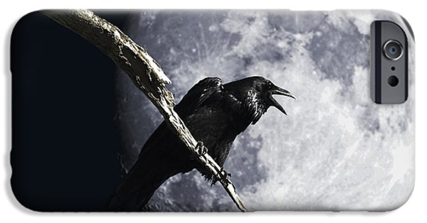 Aviary iPhone Cases - Raven Barking at the Moon iPhone Case by Wingsdomain Art and Photography