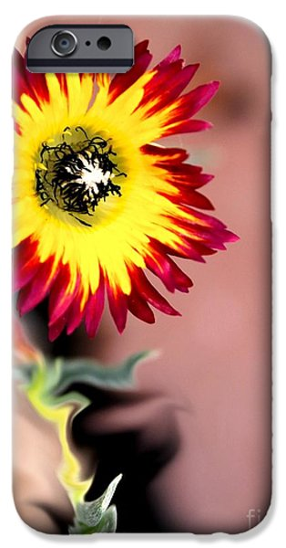Discernment iPhone Cases - Reach iPhone Case by Cheryl Gidding