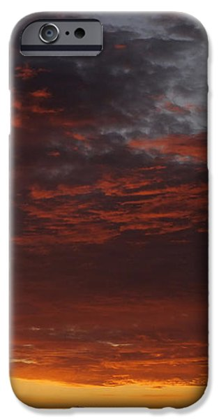 Reach for the Sky 12 iPhone Case by Mike McGlothlen