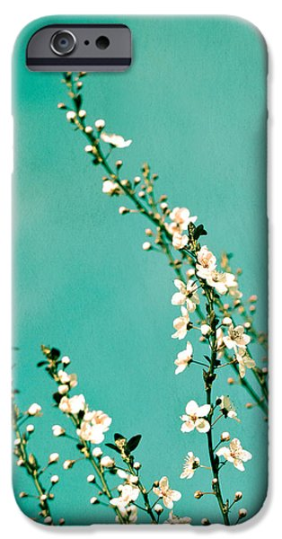 Cherry Blossoms Photographs iPhone Cases - Reach iPhone Case by Melanie Alexandra Price