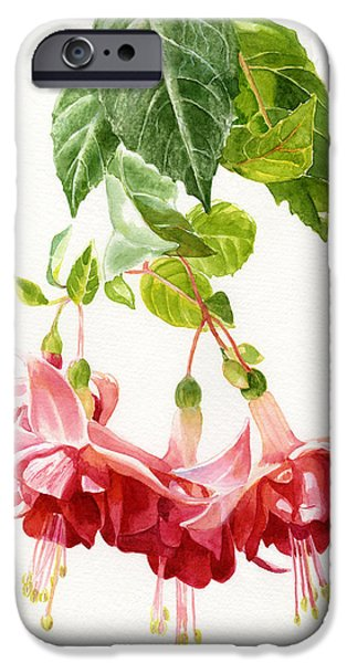 Fuchsia iPhone Cases - Red and Pink Fuchsias iPhone Case by Sharon Freeman