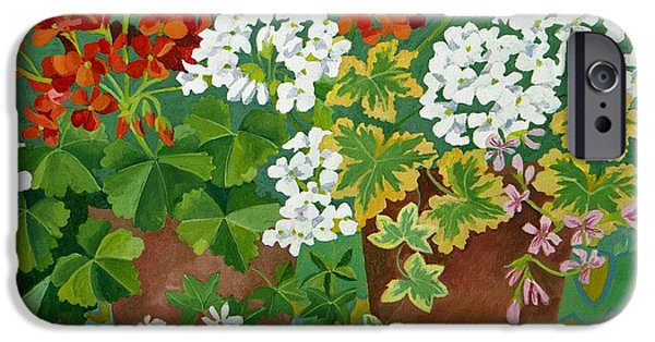 Red Geraniums iPhone Cases - Red and white geraniums in pots iPhone Case by Jennifer Abbot