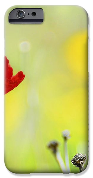 Red and yellow iPhone Case by Guido Montanes Castillo